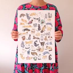 50 cats of Perth print