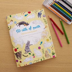 50 cats of Perth colouring book